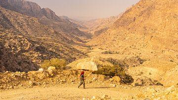 Führer für Wanderungen in der Schlucht des Dana-Naturreservats (Jordanien) von Jessica Lokker