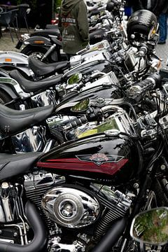 Harley Davidson van Arie Storm