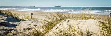 Strand Wijk aan Zee van