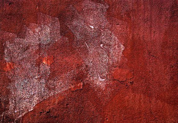 Abstracte muur: tijger van Sigrid Klop