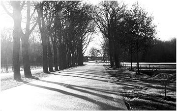 Landweg in Borger von Anuska Klaverdijk