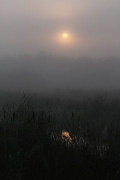 maanlicht von Kaa. M