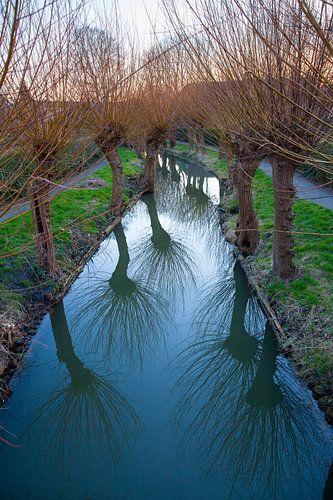 Zicht op de Minstroom bij de Abstederdijk in Utrecht. One2expose Wout Kok Photography. van