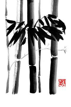 Bambus von philippe imbert