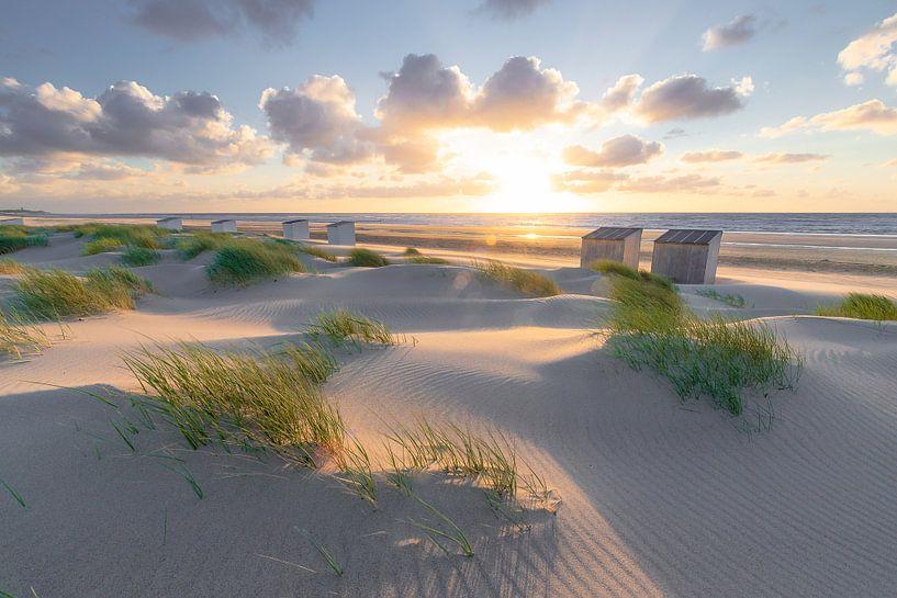 Rise (duinen Oostkapelle) van Thom Brouwer