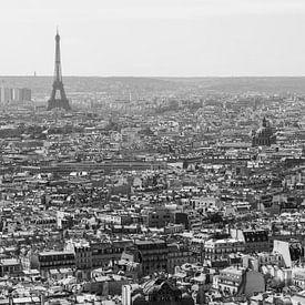 Paris from above 2 van Remko Bochem