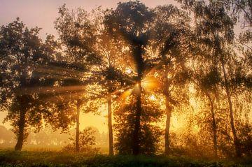 Sonnenaufgang in Diessen von Laimute Kuriene