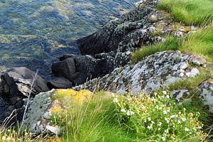 Schotland, de rotskust bij Isle of Bute