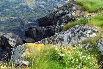 Schotland, de rotskust bij Isle of Bute von Marian Klerx
