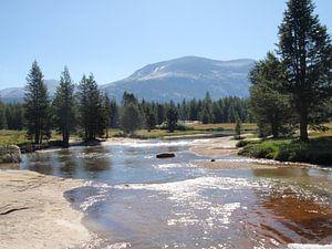 mooi landshap met rivier.