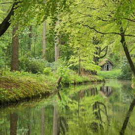 Huisje in het bos van Michel van Kooten