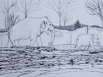 Wandelende Olifanten von Liv Jongman