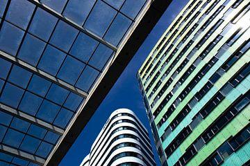 Gebäude aus der Froschperspektive von Anne Ponsen