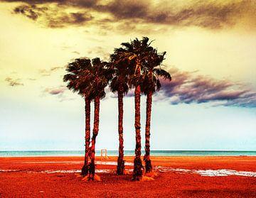 Palmbomen van Harrie Muis