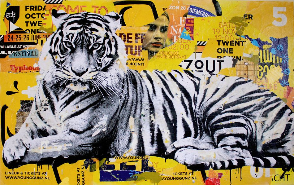 Tigerstyle van Michiel Folkers