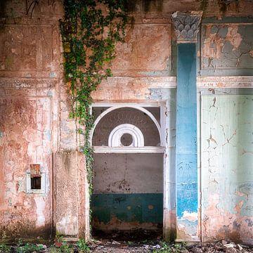 Abgelaufene Mauer mit Pflanzen. von Roman Robroek