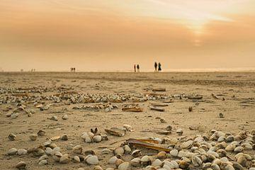 Strand van Annette Sturm