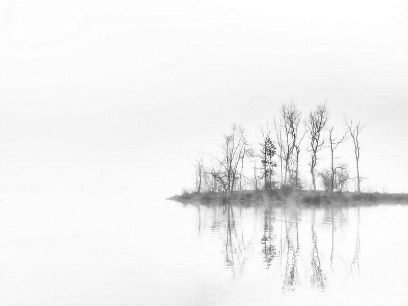 Mirror, mirror van Lex Schulte