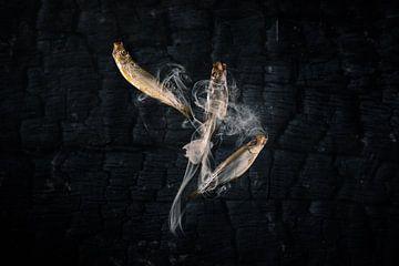 Sprot, juweeltjes uit de Waddenzee van Froukje Smith