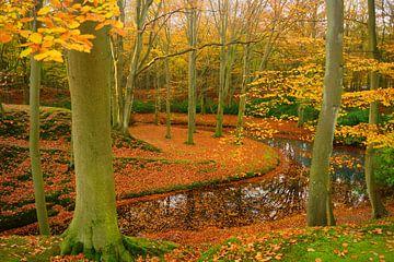 Landgoed Elswout in de herfst sur Michel van Kooten