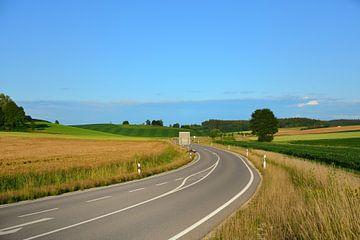 Eine Straße führt durch Felder und Wiesen von Ulrike Leone