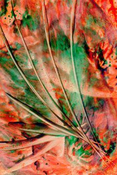 Achtsame Farben 28 von Terra- Creative