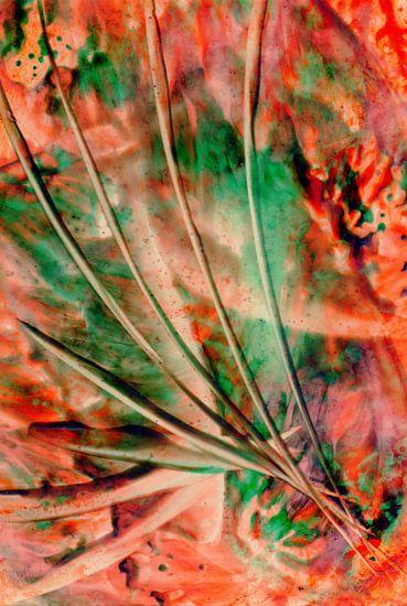 Mindful Colors 28
