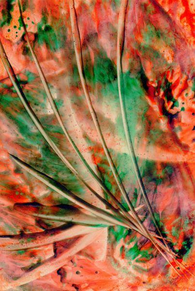Mindful Colors 28 van Terra- Creative
