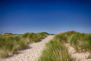 Strandopgang Noordzee van