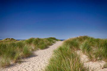 Strandopgang Noordzee van Johan Habing
