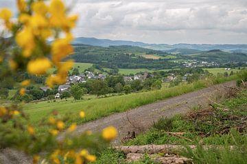 Rothaargebirge, Sauerland, Allemagne sur Alexander Ludwig