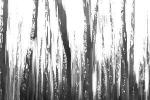 Bomen vol herinneringen 1 van Mascha de Lange