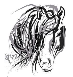 Paard en Haar