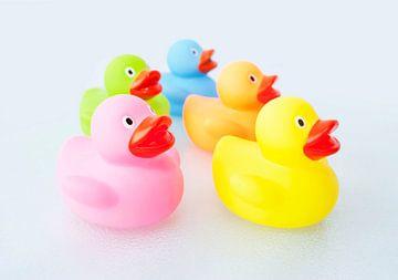 Badeendjes in vijf verschillende kleuren - Color Ducks van Andrea Loot