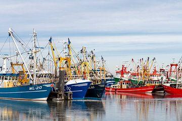 Blauwe en rode vissersboten in de haven van Lauwersoog.