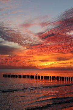Sonnenaufgang an der Ostsee von Karina Baumgart