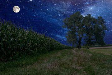nachtlandschap van Michael Nägele
