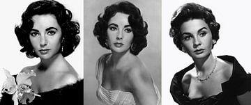 Elizabeth Taylor Collage von Brian Morgan