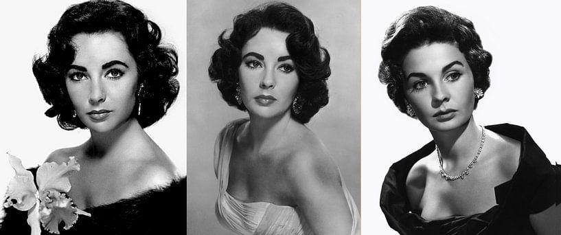 Elizabeth Taylor Collage van Brian Morgan