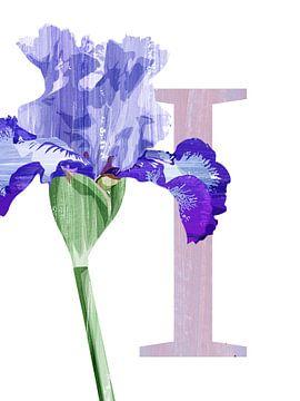 I - Iris van Goed Blauw