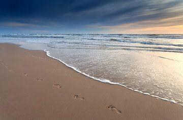 Sunset walk von Olha Rohulya