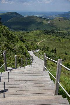 mountain stairway van Vione van Leeuwen