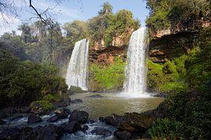 Het gebied van Iguazu Falls bestaat uit ongeveer 275 watervallen in de Iguazu-rivier