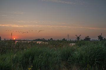 Polderlandschaft von Jasper Los