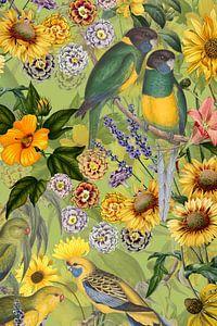Papegaai in tropische bloesemjungle in de jungle