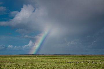 Regenboog boven Het Noorderleeg en Ameland van Harrie Muis