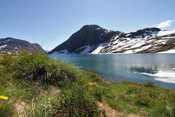 Noorwegen Djupvatnet meer boven Geiranger van