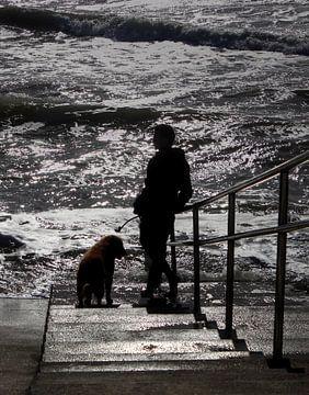 Man en hond bij zee van MSP Canvas