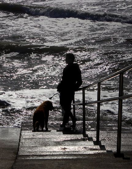 Man en hond bij zee van MSP Photographics