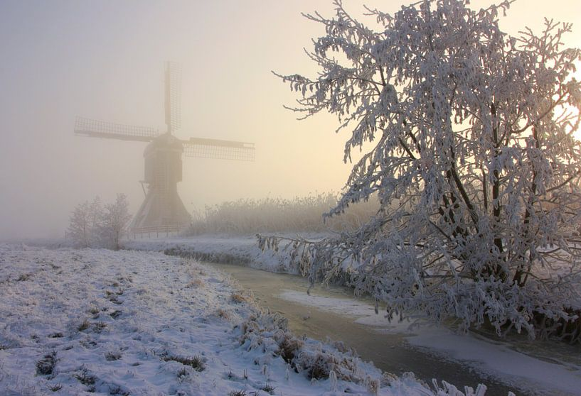 winter in holland van Ilya Korzelius